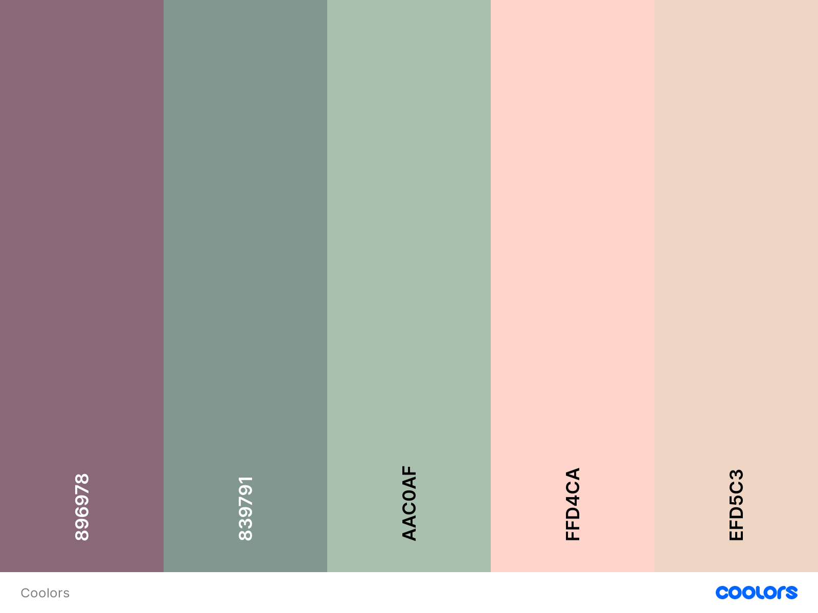 using moderate number of colours in your website design guidelines